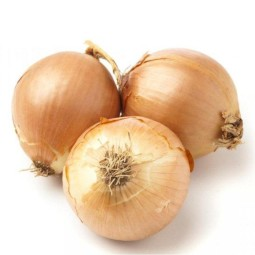Yellow onion ORGANIC CZ