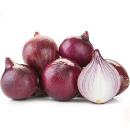 Red onion ORGANIC CZ