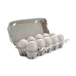 ORGANIC Eggs white 10 pcs.