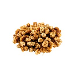 ORGANIC Mulberries white RAW