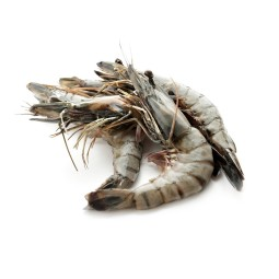 Tiger prawns - not precooked